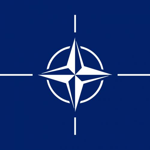 Organización del Tratado del Atlántico Norte (OTAN)