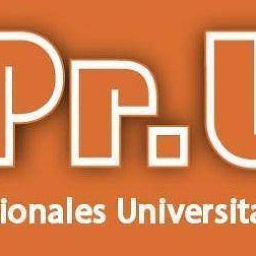Sindicato de Profesionales Universitarios de la Sanidad (SiPrUS)